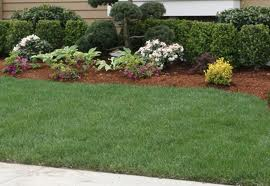 Landscaping Services Springfield, Havertown and Drexel ...