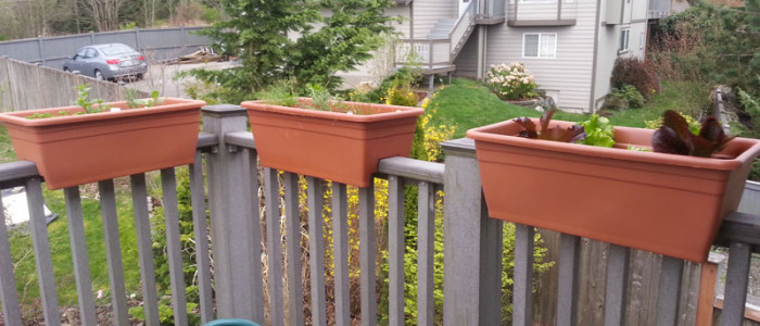 Patio Railing Planters Make A Great Option
