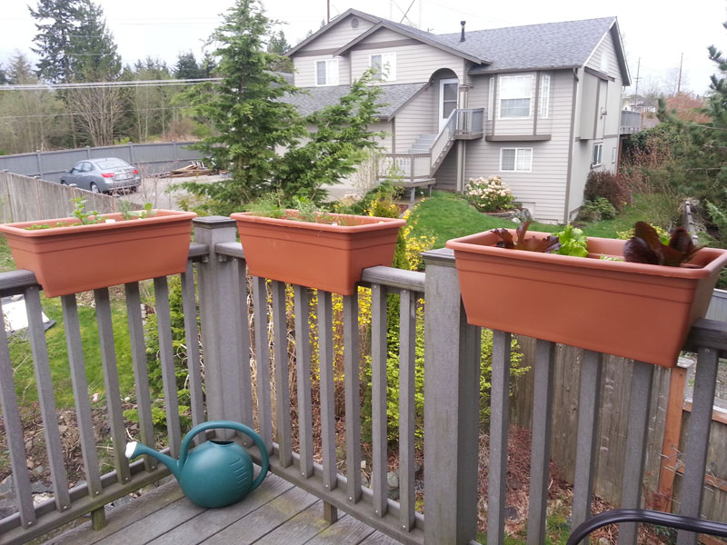 Deck rail planters plans image mag - Planters to hang on railing ...